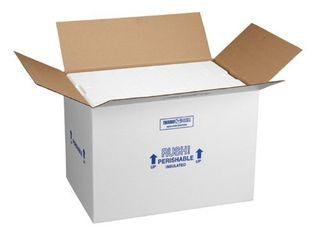 Polar Tech 266C Thermo Chill Insulated Carton with Foam Shipper  large  19  length x 12  Width x 16  Depth