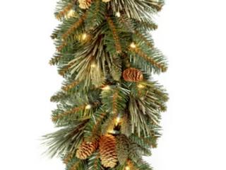 9  Carolina Pine Pre lit Garland with 100 Warm Clear White lights