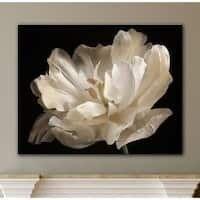 ArtWall Cora Niele s White Tulip Gallery Wrapped Canvas  Retail 143 49