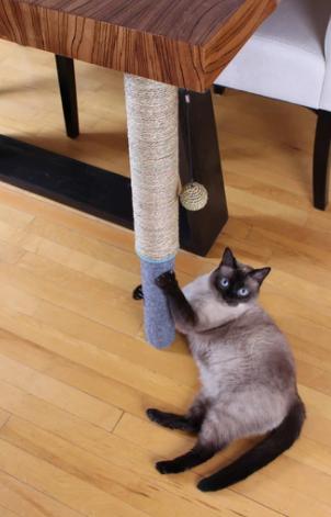 Haus Panther Scratch Pole Dual Surface  Adjustable Under Table Cat Scratcher