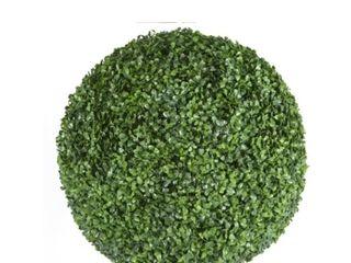 Ball Boxwood Hedge 13 x 13