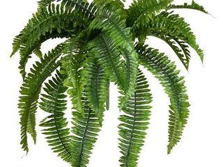Vickerman 606865   19  Green Boston Fern Bush 42 leaves  FA190623  Home Office Bushes