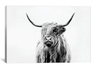 iCanvas Portrait of A Highland Cow by Dorit Fuhg Canvas Print Retail 109 49
