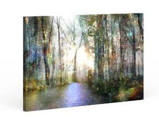 16x24  Copper Grove Roozbeh Bahramali s  Hope  Gallery Wrapped Canvas