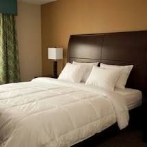 Hotel Style Enviroloft Down Alternative Hypoallergenic Blanket with Duvet loops  Kings