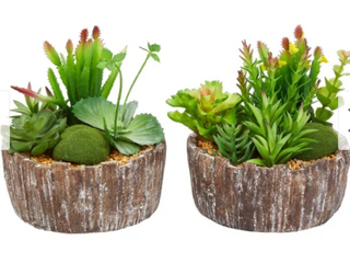 8 Tall Faux Succulents Set of 2 Assorted Greenery Arrangements in Decorative Concrete Planters by Pure Garden Retail 77 98