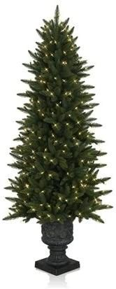 4 5  Highland Estate Potted Spruce Christmas Tree Balsam Hill
