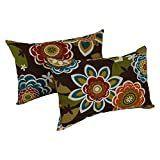 Blazing Needles Indoor Outdoor lumbar Pillow  Set of 2