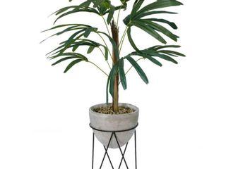 Flora Bunda 3 15 ft  Palm in Cement Planter on Metal Stand