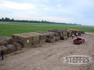 08 Hay   Forage  litchfield  MN  6 11 13 357 JPG