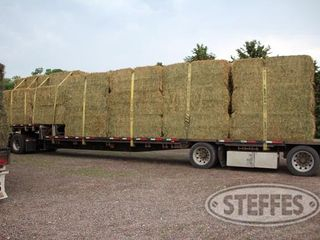04 Hay   Forage  litchfield  MN  6 11 13 148 JPG