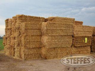 01 Hay   Forage  litchfield  MN  6 11 13 186 JPG
