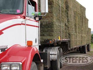 03 Hay   Forage  litchfield  MN  6 11 13 143 JPG