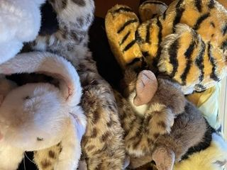 Box of Stuff Animals