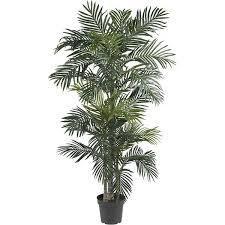 Silk 6 5 foot Golden Cane Palm Tree   Retail 105 99