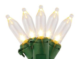 Home Accents Holiday 29 5 ft  100 light lED Mini Warm White String light with Green Wire