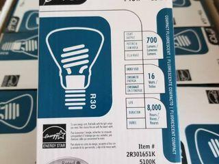 12 x R30 Type 16 Watt Compact Fluorescent Floodlight