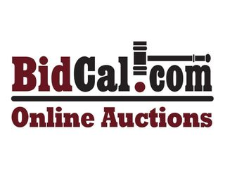 Day 2 - 2021 February Public Auction