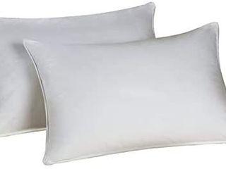 Envirosleep Dream Surrender Pillow Set   2 Pillows 20x26