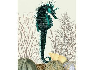 Fab Funky Seahorse And Sea Urchins Canvas Art
