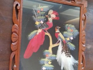 Wooden Framed Mexican Feather Bird Portrait  Made in Mexico with Real Feathers