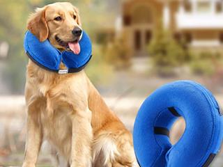 Bencmate  Inflatable Collar  l  Neck Circumference 12 18   labratodor  Golden Retriever