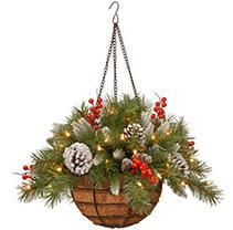 National Tree 20 Inch Frosted Berry Hanging Basket with Cones  Red Berries and 50 Warm White lED Battery Operated lights with Timer