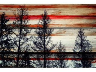 Handmade Parvez Taj   Trees Against Red Striped Sky Print on Canvas  Retail 207 99