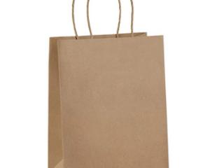 Bag Dream   8in x 10in Paper Gift Bags