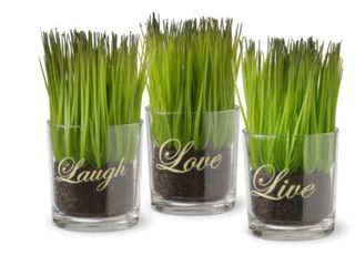 Copper Grove Machmell Printed live  laugh  love Glass Pots with Artificial Grass  Set of 3    Green