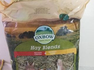 Oxbow Animal Health Hay Blends Western Timothy and Orchard Grass 90 Oz July 8 2021