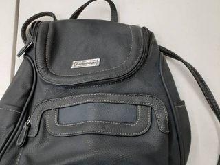St  John s Bay Backpack