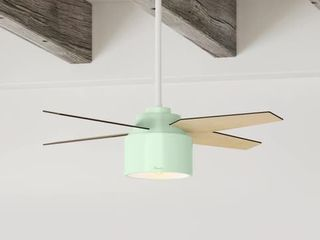Hunter 52  Cranbrook Ceiling Fan   Color Mint