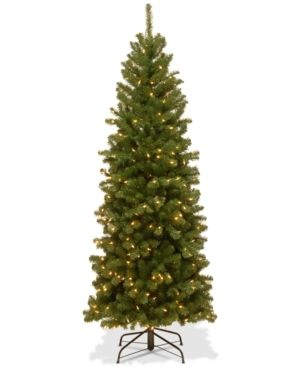 6 Foot   Green  6 foot Spruce Pencil Slim Tree with Clear lights Retail 101 49