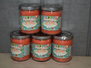 5 Pawtopia Pet Odor Candles