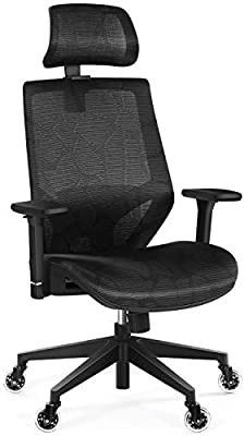 Ergonomic Office Mesh Chair with 3D Armrest
