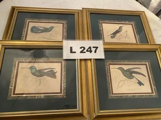 Framed bird prints 4