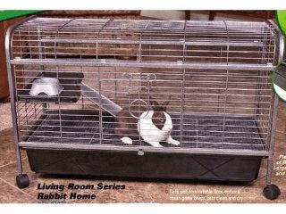 Rabbit Guinea Pig Home in Black