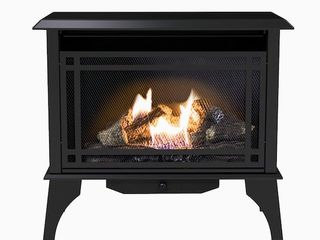 Pleasant Hearth 1000 sq ft Dual Burner Vent Free Natural Gas or liquid Propane Gas Stove