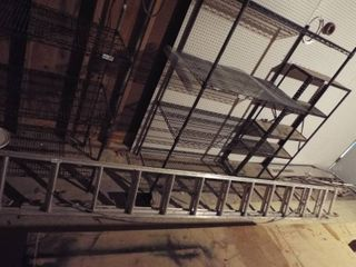 Household duty extension ladder