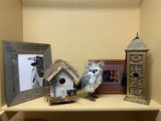 Bird Houses  Owl  Framed Pictures
