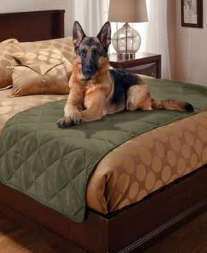Pet Pals for Your Home 1 Piece Faux Suede King Bed Protector  Sage