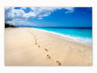 Colossal Images   Footsteps On The Beach Canvas Wall Art   Multi color Retail 263 99