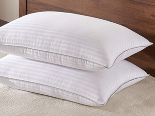 Basic Beyond Polyester and Bamboo Fiber Pillow