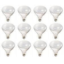 Philips 65 Watt BR40 Incandescent Flood light Bulb Soft White  2700K   12 Pack    MSRP  39 99