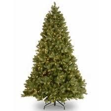 national company tree fir tree with clear lights 7 5 Foot   Green  Retail 234 48