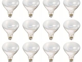 Philips 387795 Soft White 65 Watt BR40 Indoor Flood light Bulb  12 Pack