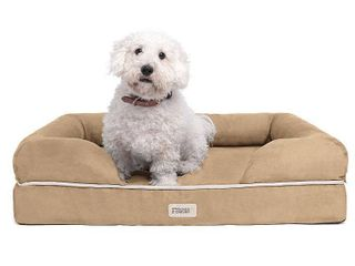 Madison Park Friends Forever Hastings Pet Couch with Solid Memory Foam  Beig Green  Small