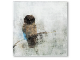 Mercana Guardian Owl  30 X 30  Made to Order Canvas Art