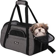 Gray Pet Carrier with Collapsing Water Dish